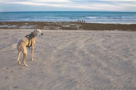 6 weeks and a trip to Baja